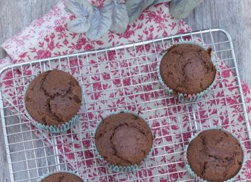 Muffins sans gluten au chocolat, érable et fleur de sel (vegan)