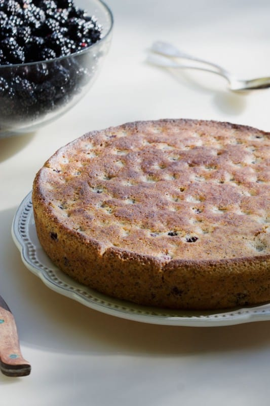 Gâteau aux mûres
